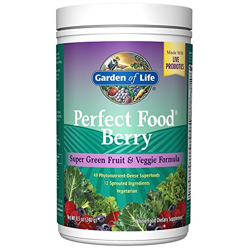 Garden Of Life Whole Food Fruit And Vegetable Supplement Perfect Food Superfood Green Dietary