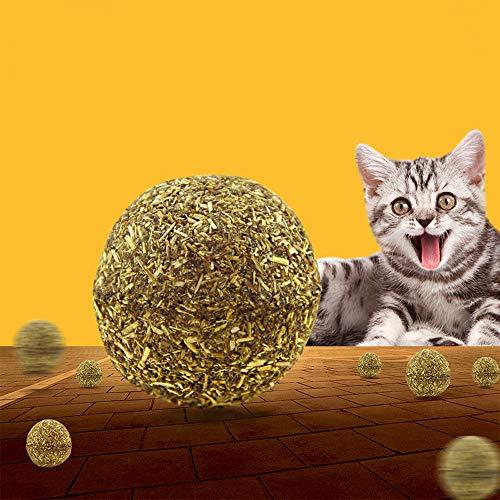 2pcs Cat Catnip Toy Pet Kitten Claw Biting Chewing Teeth Grinding Mint Cat Toys Funny Interactive Training Catnip Plush Pillow