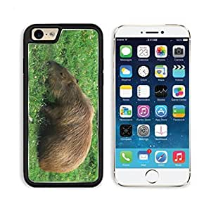 Capybara Guinea Pigs Rodent Chinchillas Animals Apple iPhone 6 TPU Snap Cover Premium Aluminium Design Back Plate Case Customized Made to Order Support Ready Luxlady iPhone_6 Professional Case Touch Accessories Graphic Covers Designed Model Sleeve HD Template Wallpaper Photo Jacket Wifi Luxury Protector Wireless Cellphone Cell Phone by heywan