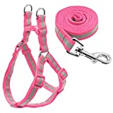 Kuntrona No Pull Reflective Nylon Dog Harness and Leash Set Step in Puppy Pug Harnesses Vest and Walking Leads for Small Medium Dogs Pink S