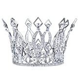 Stuffwholesale 4inch Height Floral Full Crown Austrian Rhinestone Crystal Tiara Bridal Wedding Hair Accessory (Silver)