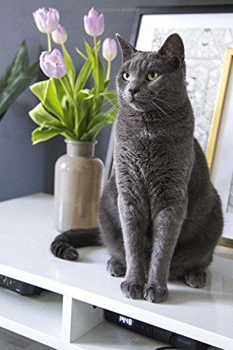 Elegant Gray Cat and a Vase of Purple Tulips Still Life Journal: 150 Page Lined Notebook/Diary PDF