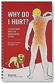 Why Do I Hurt? (8746)