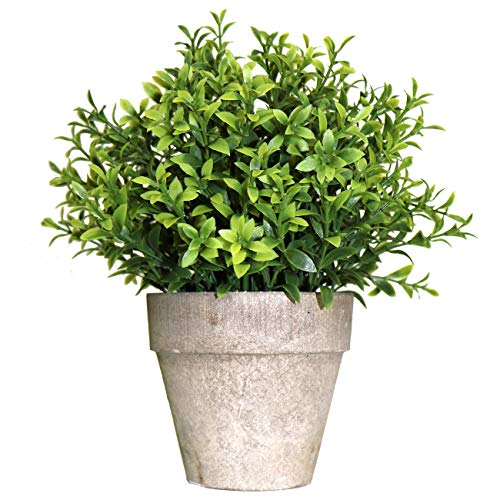 Beebel Artificial Plants Mini Topiary Shrubs Potted Grass Faux Fake Plant for Home House Bathroom Table Decor (LHC - Grass/Gray Pot)