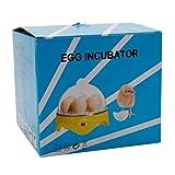 Depruies Automatic 7-Egg Mini Practical Poultry