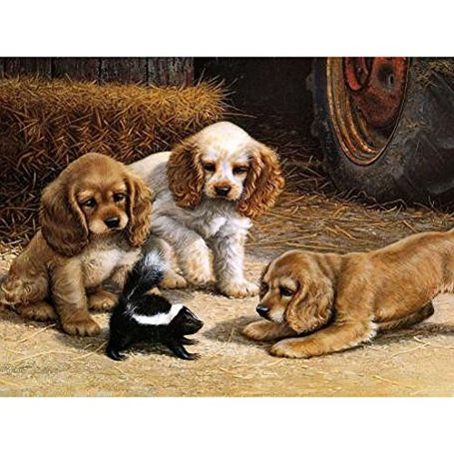 DIY Oil Painting Paint by Numbers Kit for Adults Kids Beginner Hand Paintwork Cavalier King Charles Spaniel Dog 16x20 inch(Wood Framed) - Cavalier King Charles Spaniels Framed