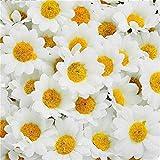ADSRO 100Pcs Artificial Flowers Wholesale Fake Flowers Heads Gerbera Daisy Silk Flower Heads Sunflowers Sun Flower Heads for Wedding Party Flowers Decorations Home White
