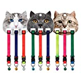 3PCS Pet Collar Heavy Duty Nylon Adjustable Dog Collar Cat Collar with Bell