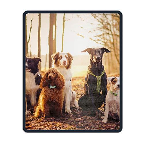 (Animal Dog Border Collie Terrier Australian Shepherd Poodle German Mousepad Custom Gaming Mouse Pad Rectangle Non-Slip Rubber Mat )