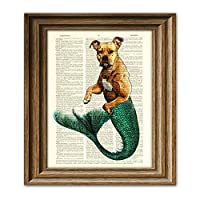 Max Merpibble the Mermaid Pit Bull Is Super Swole Dictionary Page Dog Pitbull Book Art Print