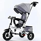 &Baby Stroller Children's Tricycle 2-6 Years Old Child Large Children's Tricycle Bicycle (Color : 2#)