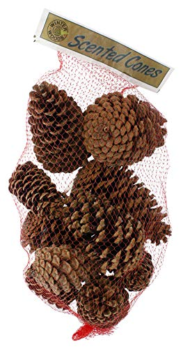 Winter Woods Cinnamon Scented Pinecones 12-14/Pkg, ()