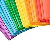 AmazonBasics Heavy Duty Plastic Folders with 2