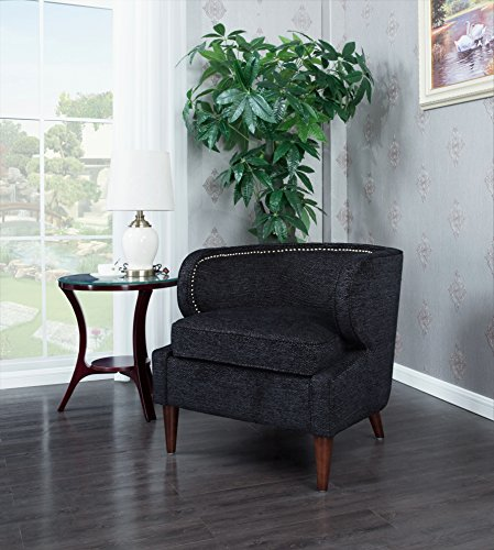 Iconic Home Vered Accent Side Club Chair Chenille Upholstery Polished Brass Finish Nailheads, Vered, Retro Modern