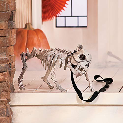 Fun Express - Halloween Skeleton Dog for Halloween - Home Decor - Decorative Accessories - Home Accents - Halloween - 1 Piece