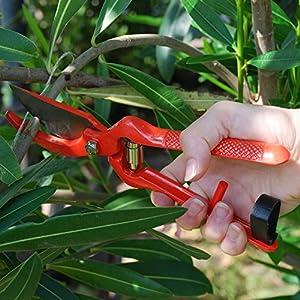 PROFESSIONAL PRUNING SHEARS - Best Heavy Duty Hand Pruners for Serious Gardening - Versatile, Ergonomic, Razor Sharp Steel Garden Clippers, Tree Trimmers + Holster!