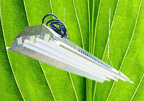 T5 HO Grow Light - 4 FT 3 lamps - DL843 Fluorescent Hydroponic Indoor Fixture Bloom Veg Daisy Chain with Bulbs