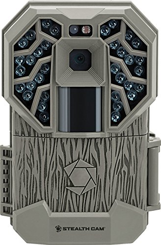 Amazon.com : 1006645 Stealth Cam G34 Game Camera 12 MP : Sports ...