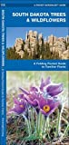 South Dakota Trees & Wildflowers: A Folding Pocket Guide to Familiar Species (A Pocket Naturalist Guide)