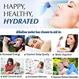 aQuasafe Home Water Ionizer | pH 2.8 to 11 Alkaline