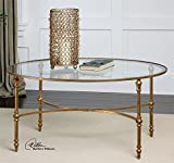Iron and Glass Coffee Table Elegant Oval Gold Iron Coffee Table
