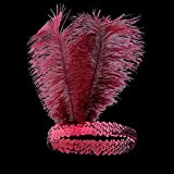 BABEYOND 1920s Flapper Headband Roaring 20s Sequined Showgirl Headpiece Great Gatsby Headband with Wine Red Feather