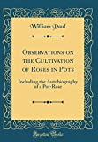 Amazon / Forgotten Books: Observations on the Cultivation of Roses in Pots Including the Autobiography of a Pot - Rose Classic Reprint (William Paul MD)