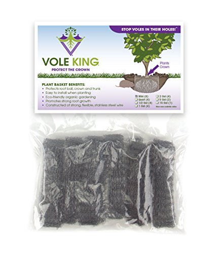 VOLE KING Plant Baskets, Mini Size, Pack of 6 - Protect Small Plants and Flowers from Voles, Gophers, Moles Without Repellent - Protect Landscaping from Mini Burrowing Animals - A One Time Solution