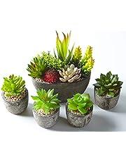 Jobary Set di 5 Piante Artificiali Succulente (Include 10 Piante), Colorate e Decorative Finte Piante con Pietre, Ideali per casa, Ufficio e Decorazione per Esterni