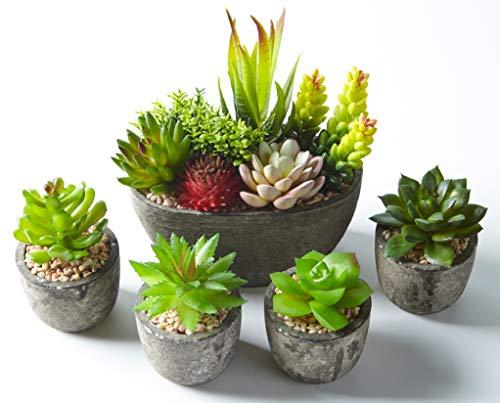 Jobary 5pcs Plantas Suculentas Artificiales Falso Plantas Decorativas Suculentas,Ideal para el Hogar, Oficina y Decoracion al aire libre Falso Plantas