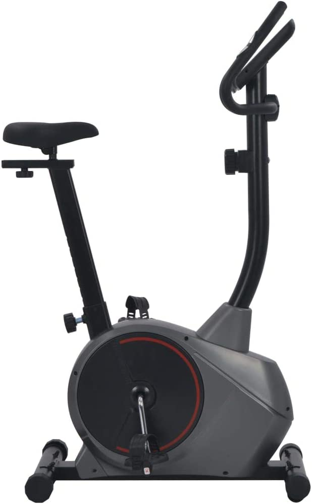 vidaXL Bicicleta Estática Magnética Pulsómetro Pantalla LCD 8 ...