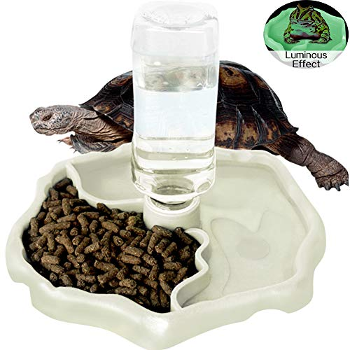 (WINGOFFLY Automatic Reptile Feeders Waterer Automatic-refilling Turtle Water Dispenser Bottle Tortoise Food Water Bowl Feeding Dish for Lizards Luminous)