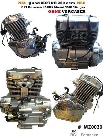 Quad Motor 250 ccm Barossa CPI XS 250 sin Carburador: Amazon ...
