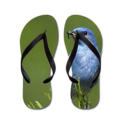 Echt Blauwe Mens Van Teague Heren Op Een Groenblijvende Rubberen Slippers Sandalen Zwart