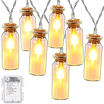 DecorNova String Lights, 7.8 Feet 15 LED Battery Operated Fairy Glass Jar String Lights with 3 AA Battery Case & 8 Modes for Bedroom Christmas Weddings Camping Parties, Warm White