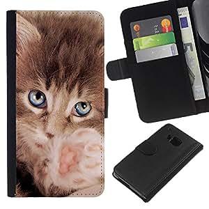 BearCase / Cuero de la tarjeta la carpeta del tirón Smartphone Slots Protección Holder /// HTC One M9 /// Maine Coon gatito pequeño felino