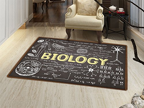 smallbeefly Educational Floor Mat for kids Black Chalkboard Biology Hand Written Symbols School Classroom Door Mat Increase Black Brown Pale Yellow ()
