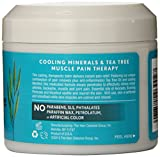 Jason Purifying Tea Tree First Aid Soothing