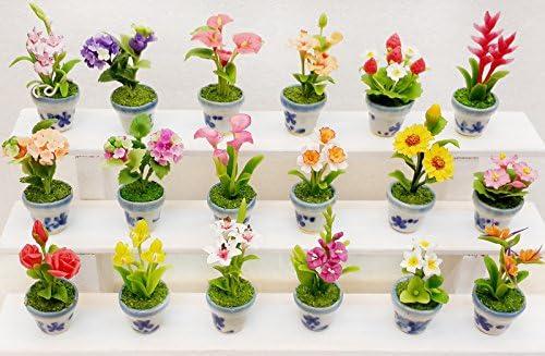 Colección exótica Proudnature miniaturas de jardín macetas escala 1:12 18 unidades.: Amazon.es: Hogar