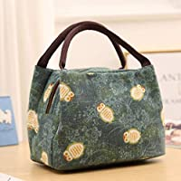 Deal Noon Reusable Stylish Handcrafted Lunch Box Insulated Lunch Bag For Men & Women Boy & Girl Meal Prep Lunch Tote Boxes (Cartoon - Green Owl)