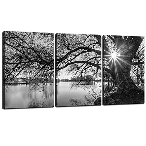 (sechars - Canvas Prints Wall Art Black and White Tree in Sunrise Canvas Wall Art Lake Landscape Picture Giclee Print on Canvas Framed and Ready to Hang Modern Home Ofiice Wall Decor - 48