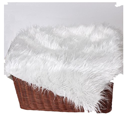 [ZhiDa Newborn Baby Photography Photo Prop Faux Fur Blanket Photo Props Backdrops (White)] (Make Your Own Halloween Costume With Clothes)