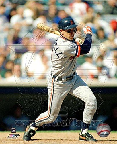Alan Trammell - Batting Photo 8 x (Alan Trammell Batting)