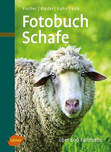 fotobuch-schafe