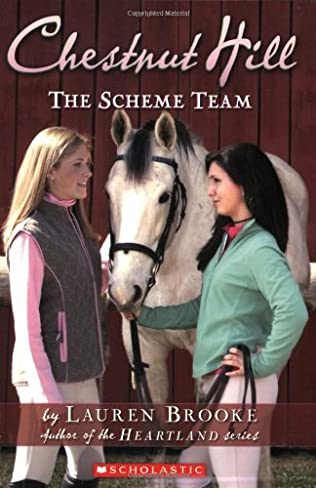 book cover of The Scheme Team