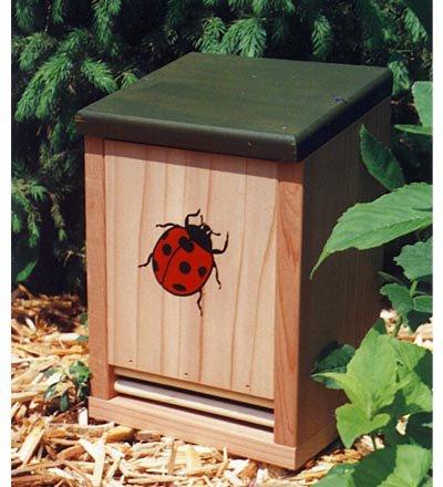 Schrodt Wood (Wood Ladybug House)