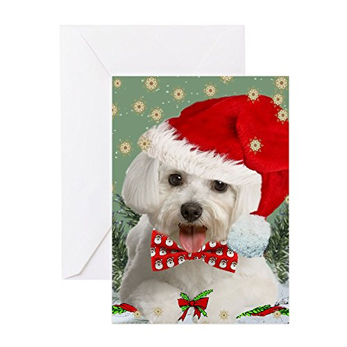 CafePress - Maltese Wish You Merry Christmas Cards Greeting Ca - Greeting Card (20-pack), Note Card with Blank Inside, Birthday Card - Maltese Cards Christmas