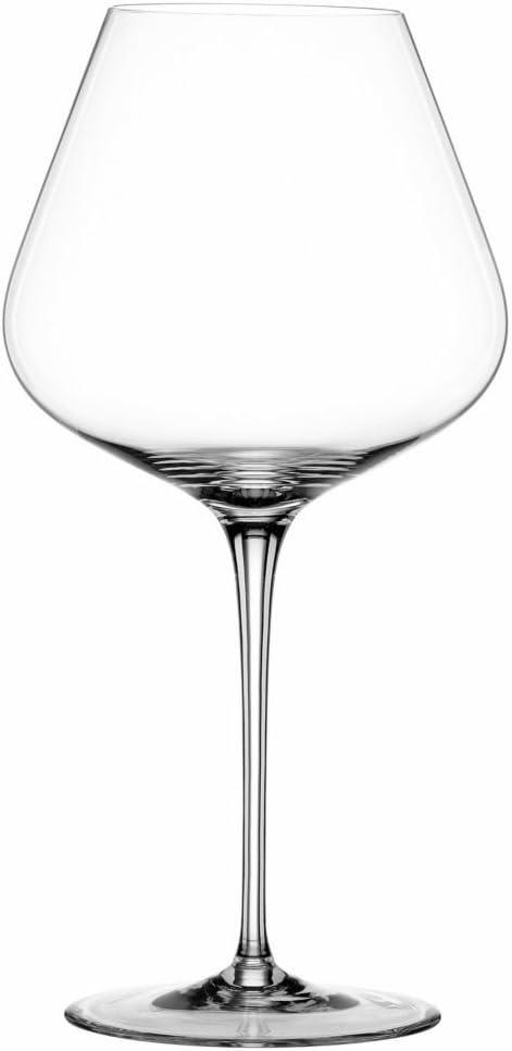 Spiegelau Hybrid 2 pc. Burgundy Wine