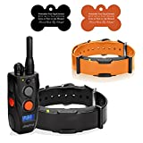 ARC - 2 Dog Kit (15+ Pounds) Dogtra Handheld Remote Trainer System w/ Personalized Bone ID Tags
