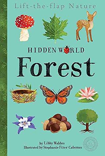 Hidden World: Forest (Tiger Tales)